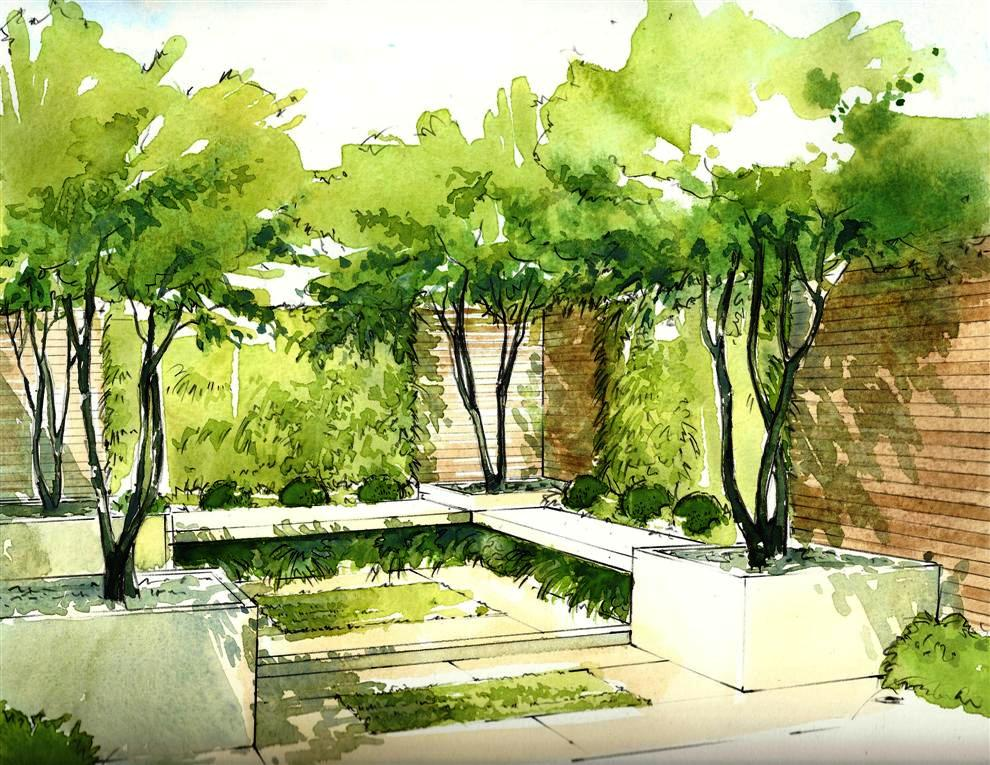 Helen thomas society of architectural illustration for Garden design sketches